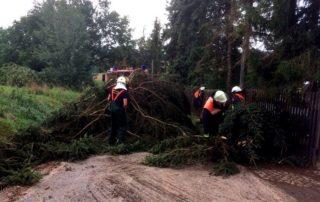 Feuerwehr Neukirchen/Pleiße bei der Beseitigung von Sturmschäden